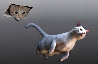 Hovrcat_descending